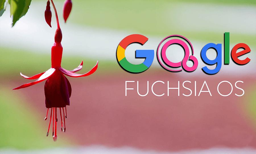 El nuevo sistema operativo 'Google Fuchsia' podría reemplazar Android en 5 años