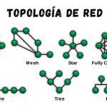Tipos de Topología de red: malla, estrella, árbol, bus y anillo