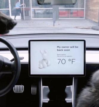 """Tesla lanza el """"Modo Perro"""" para Cuidar a su Mascota Cuando lo Dejes Solo"""