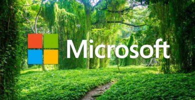 Bosque, El Nuevo Lenguaje de Programación de Microsoft