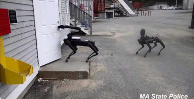 La Policía de los EE.UU ya comenzó a utilizar los Perros Robots de Boston Dynamics