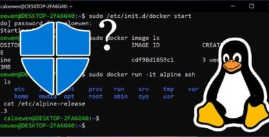 Microsoft Confirma Que Linux tendrá su Antivirus Windows Defender