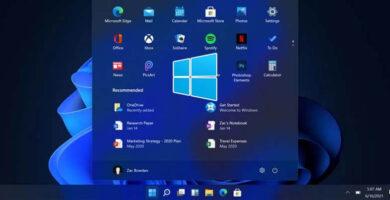 ¿Cómo Regresar a Windows 10 desde la preview de Windows 11?